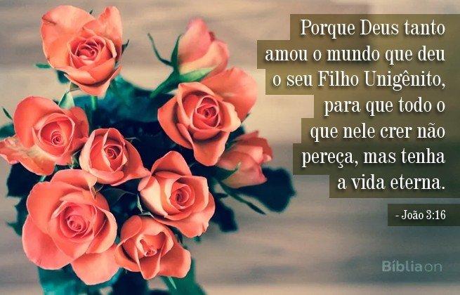 3 João 16