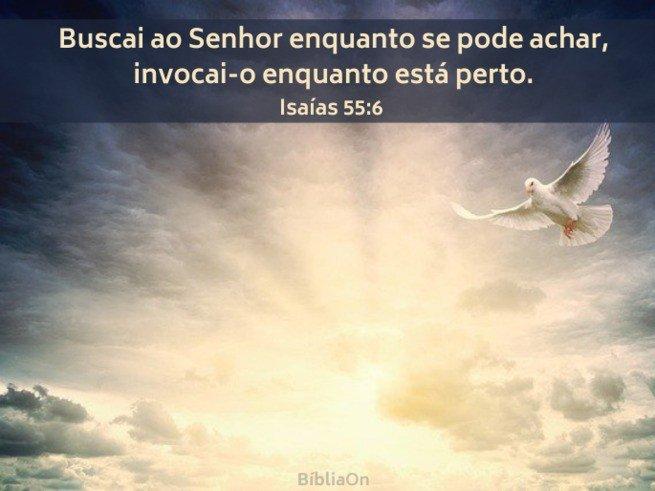 Imagem de céu, raios de sol e uma pomba - Isaías 55:6 Buscai ao Senhor enquanto se pode achar