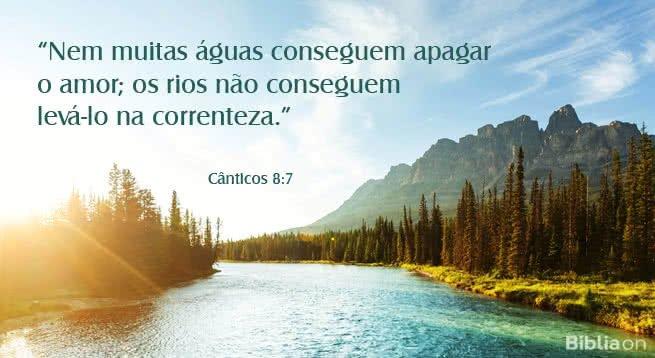 Nem muitas águas conseguem apagar o amor; os rios não conseguem levá-lo na correnteza. Cânticos 8:7