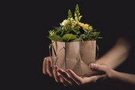 Dar com alegria - estudo sobre a generosidade