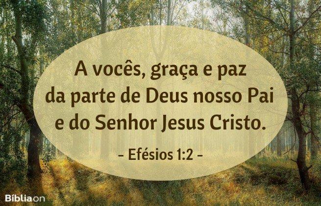 A vocês, graça e paz da parte de Deus nosso Pai e do Senhor Jesus Cristo. Efésios 1:2