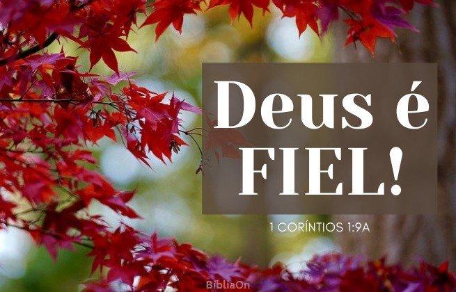 Imagem folhas vermelhas de outono - Deus é fiel! 1 Coríntios 1:9A
