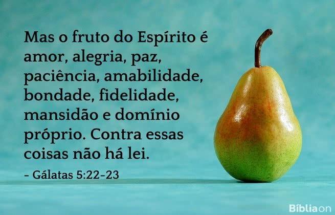 Mas o fruto do Espírito é amor, alegria, paz, paciência, amabilidade, bondade, fidelidade, mansidão e domínio próprio. Contra essas coisas não há lei. Gálatas 5:22-23
