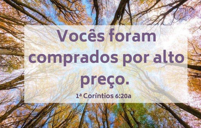 Vocês foram comprados por alto preço. Imagem de árvores altas no fundo. Versículo 1ª Coríntios 6:20a