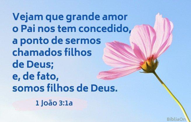Vejam como é grande o amor do nosso Deus... Imagem de uma flor rosa num fundo azul - 1 João 3:1a