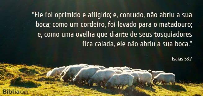 """""""Ele foi oprimido e afligido; e, contudo, não abriu a sua boca; como um cordeiro, foi levado para o matadouro; e, como uma ovelha que diante de seus tosquiadores fica calada, ele não abriu a sua boca."""" Isaías 53:7"""
