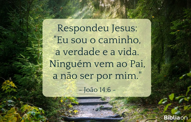 Respondeu Jesus: Eu sou o caminho, a verdade e a vida. Ninguém vem ao Pai, a não ser por mim. João 14:6