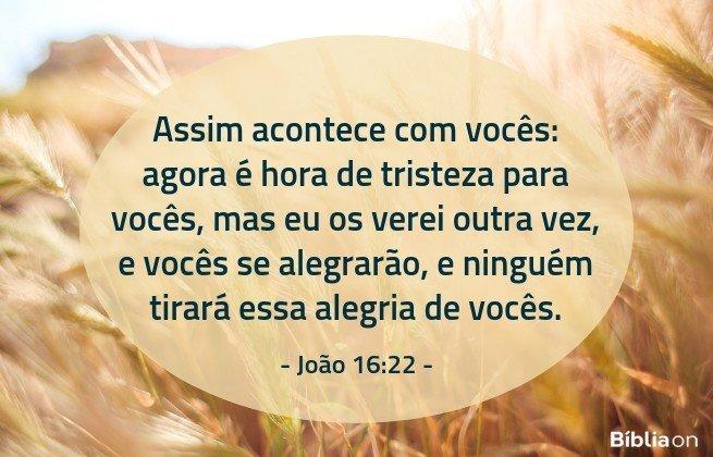 Assim acontece com vocês: agora é hora de tristeza para vocês, mas eu os verei outra vez, e vocês se alegrarão, e ninguém tirará essa alegria de vocês.João 16:22