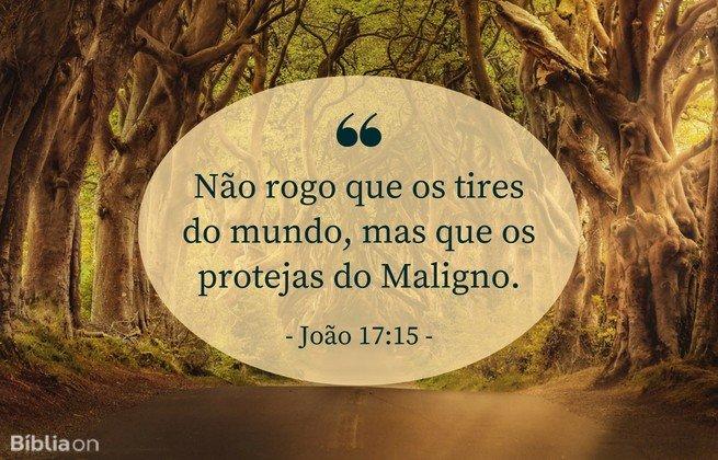 Não rogo que os tires do mundo, mas que os protejas do Maligno. João 17:15