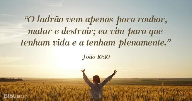 O ladrão vem apenas para roubar, matar e destruir; eu vim para que tenham vida e a tenham plenamente. João 10:10