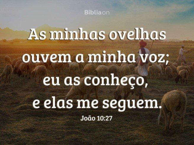João 10:27