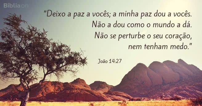 Deixo a paz a vocês; a minha paz dou a vocês. Não a dou como o mundo a dá. Não se perturbe o seu coração, nem tenham medo. João 14:27