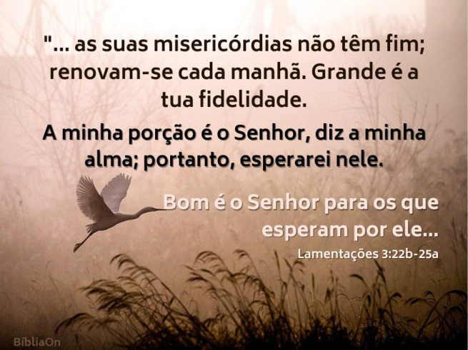 Garça voando no alvorecer - Lamentações 3:22b -25a