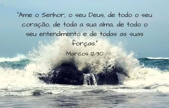 Ame o Senhor, o seu Deus, de todo o seu coração, de toda a sua alma, de todo o seu entendimento e de todas as suas forças. Marcos 12:30