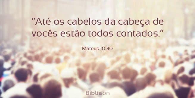"""""""Até os cabelos da cabeça de vocês estão todos contados."""" Mateus 10:30"""