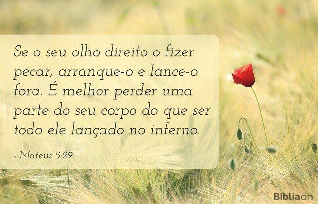 mateus 5:29