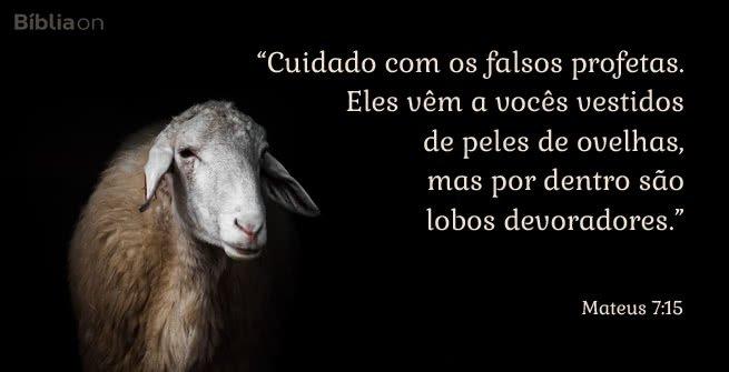 """""""Cuidado com os falsos profetas. Eles vêm a vocês vestidos de peles de ovelhas, mas por dentro são lobos devoradores."""" Mateus 7:15"""
