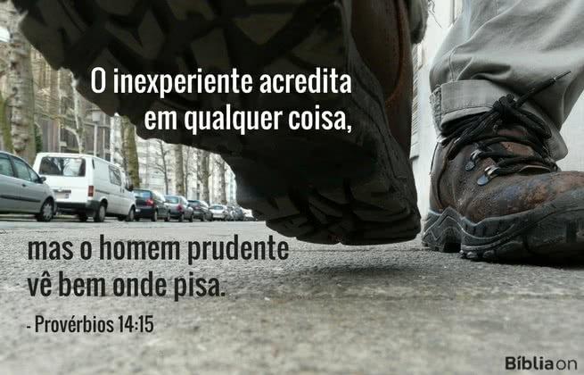 O inexperiente acredita em qualquer coisa, mas o homem prudente vê bem onde pisa. Provérbios 14:15