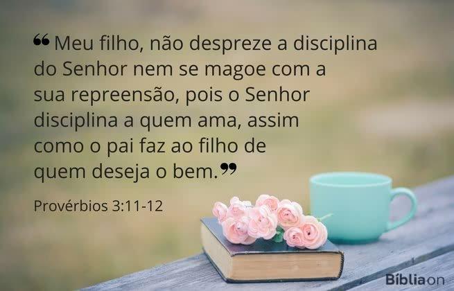 Meu filho, não despreze a disciplina do Senhor nem se magoe com a sua repreensão, pois o Senhor disciplina a quem ama, assim como o pai faz ao filho de quem deseja o bem.  Provérbios 3:11-12