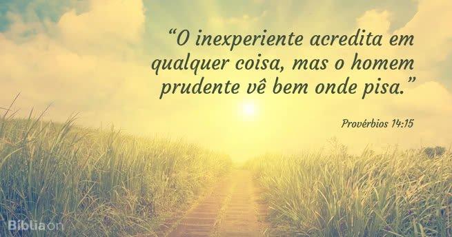 """""""O inexperiente acredita em qualquer coisa, mas o homem prudente vê bem onde pisa."""" Provérbios 14:15"""