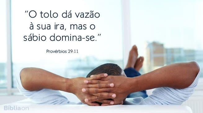 """""""O tolo dá vazão à sua ira, mas o sábio domina-se."""" Provérbios 29:11"""