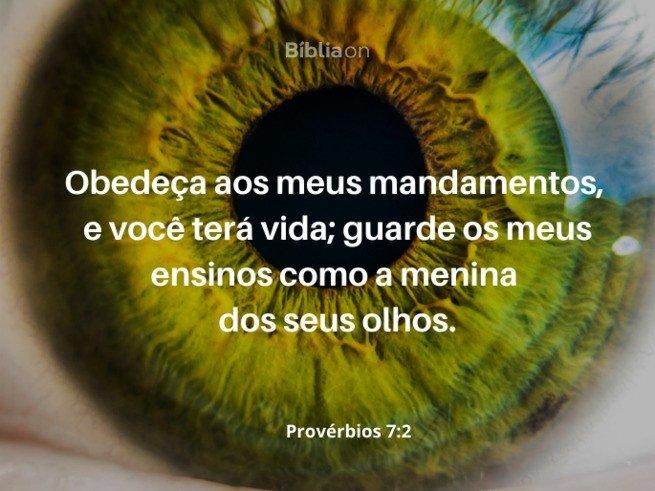 Provérbios 7:2. Menina dos seus olhos.