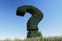 4 respostas da Bíblia para 4 perguntas importantes
