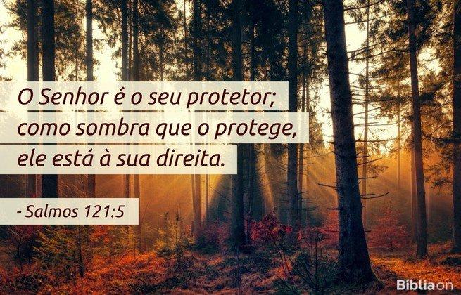 O Senhor é o seu protetor; como sombra que o protege, ele está à sua direita. Salmos 121:5