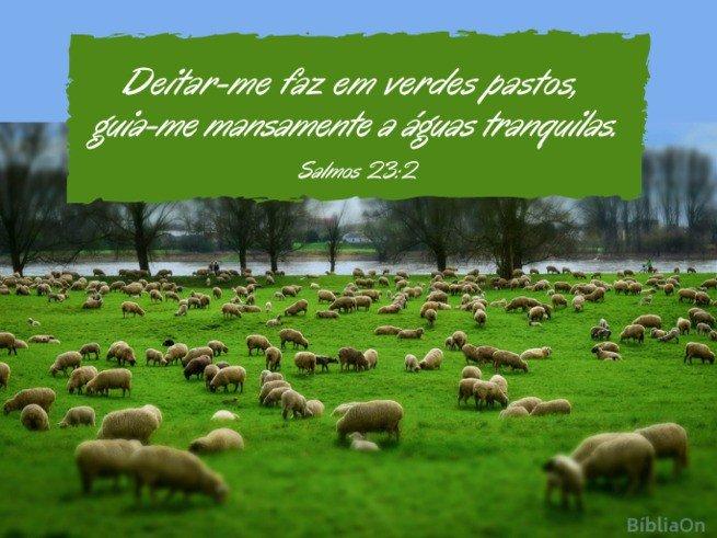Imagem de rebanho de ovelhas num campo verde, ao fundo um rio - Salmo 23:2 'Em verdes pastos...'
