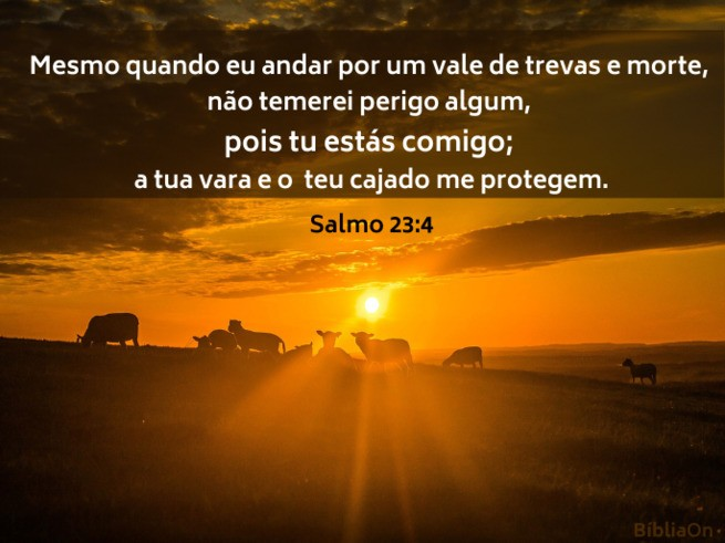 Imagem sombra, silhueta de ovelhas no pôr do sol - Salmo 23:4 'Ainda que eu ande pelo vale da sombra da morte...'