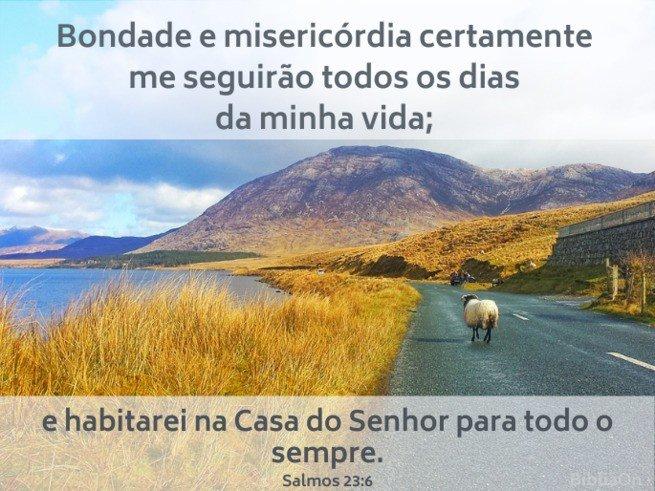 Paisagem com ovelha na estrada - versículo Salmo 23:6 'Bondade e misericórdia sempre me seguirão...'