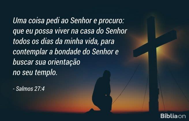 Uma coisa pedi ao Senhor e procuro: que eu possa viver na casa do Senhor todos os dias da minha vida, para contemplar a bondade do Senhor e buscar sua orientação no seu templo. Salmos 27:4