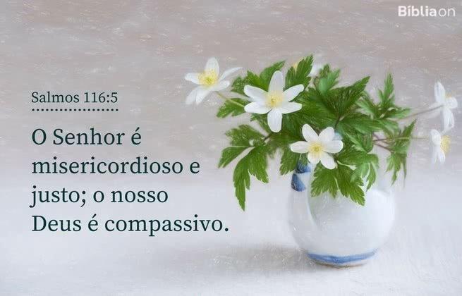 O Senhor é misericordioso e justo; o nosso Deus é compassivo. Salmos 116:5