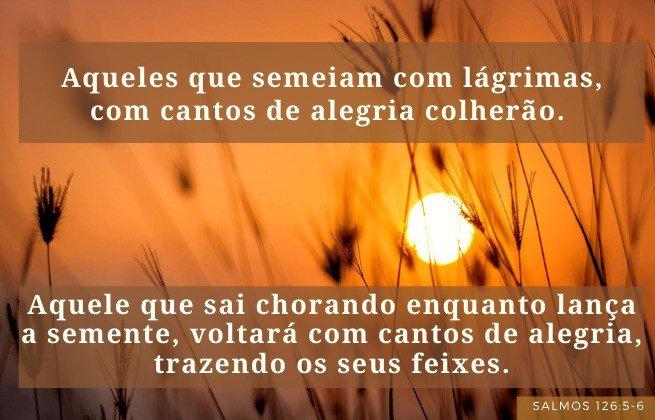 versículos para quem está triste - Salmos 126:5-6 - Os que semeiam com lágrimas colherão com júbilo