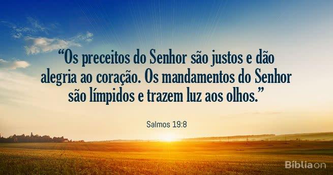 """""""Os preceitos do Senhor são justos e dão alegria ao coração. Os mandamentos do Senhor são límpidos e trazem luz aos olhos."""" Salmos 19:8"""