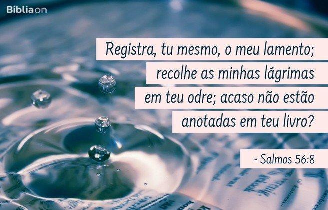 Registra, tu mesmo, o meu lamento; recolhe as minhas lágrimas em teu odre; acaso não estão anotadas em teu livro? Salmos 56:8