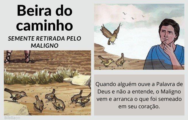 Parábola do semeador - imagens de pássaros comendo sementes no caminho, quem ouve e não entende a Palavra de Deus