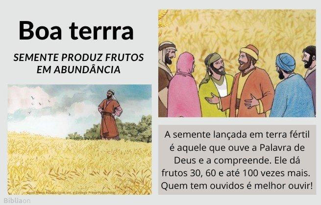 Parábola do Semeador - imagem de grande plantação de trigo, pessoas que ouvem e compreendem a Palavra de Deus