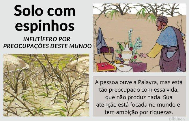 Parábola do Semeador - imagem de sementes entre espinhos, semente infrutífera pela preocupação mundana