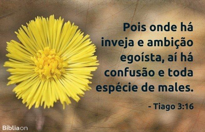 Pois onde há inveja e ambição egoísta, aí há confusão e toda espécie de males.Tiago 3:16